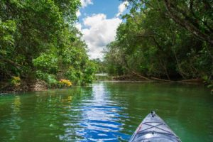 Kayaker's view of the Lukulu river